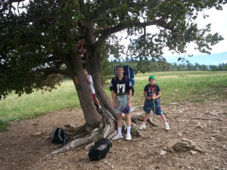upload:hike/20080718/BoysAtLonePine.jpg