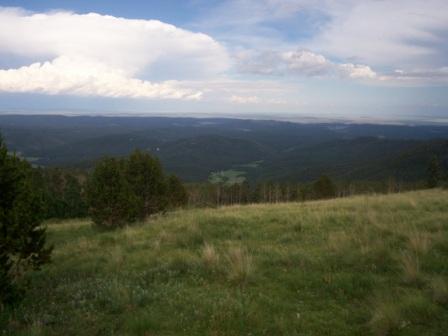 upload:hike/20080718/ViewFromLonePine.jpg